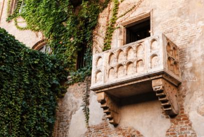 Venta de mosquiteras Verona al mejor precio