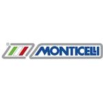 L.M. Monticelli